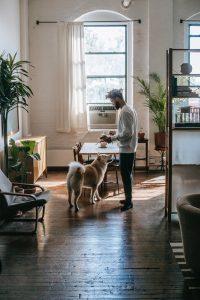 Dog and man at an apartment.